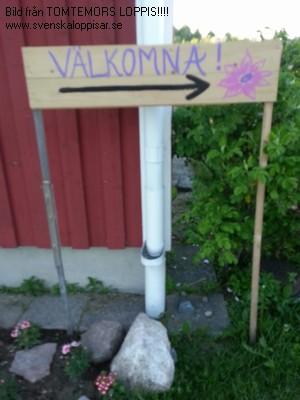 Loppisar Och Loppmarknader I Göteborgs Stad